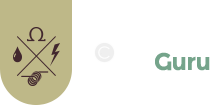VaperGuru_logo_home2.png